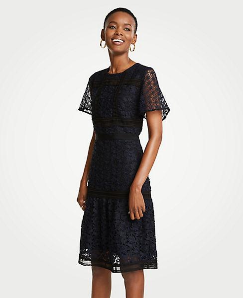 Petite Mixed Lace Flare Dress