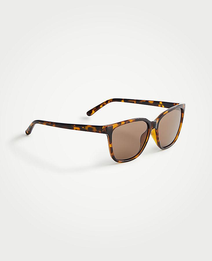 598442cdd97 Summer Square Sunglasses