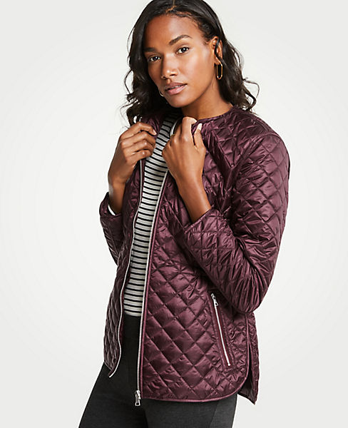 Petite Quilted Puffer Jacket