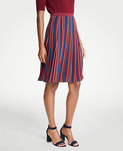 Petite Stripe Skirt