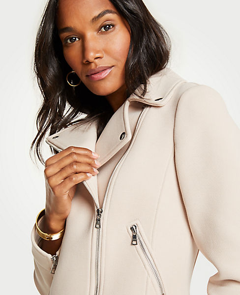 Petite Knit Twill Moto Jacket