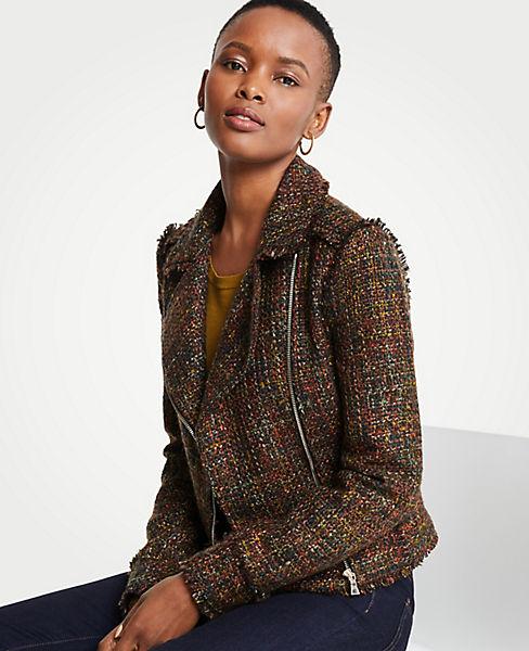 Petite Fringe Tweed Moto Jacket