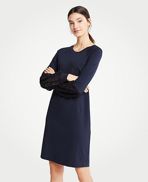 Petite Lace Lantern Sleeve Dress
