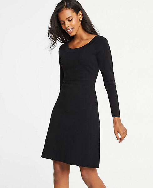 Petite Flare Sweater Dress