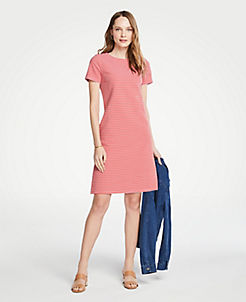 8bb3f2cb19b7 Stripe Knit Short Sleeve Shift Dress
