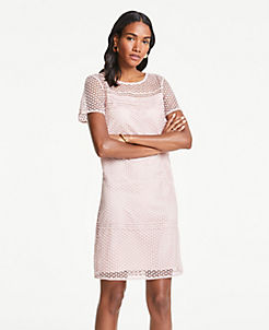 ae1ee958099 Lace T-Shirt Shift Dress