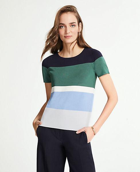 Petite Striped Sweater Tee