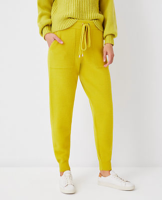 Ann Taylor The Sweater Jogger Pant In Dried Lime