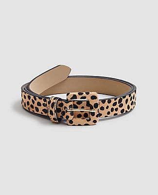 Ann Taylor Spotted Haircalf Belt In Brown Multi