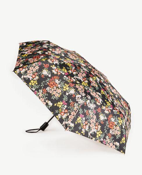 Ann Taylor Floral Umbrella