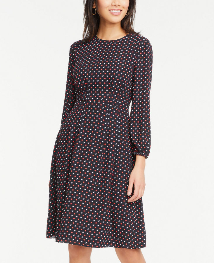 Long Sleeve Flare Dress 0