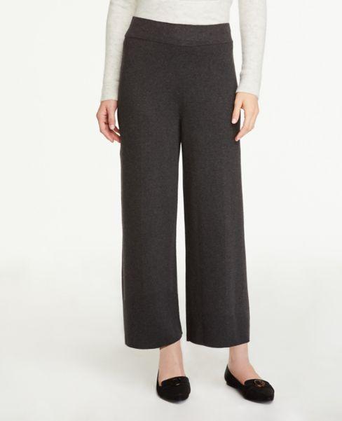 Ann Taylor Knit Wide Leg Pants