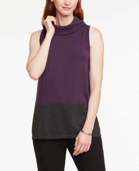 Ann Taylor Colorblock Sleeveless Tunic Sweater