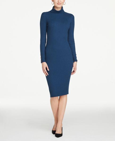 Ann Taylor Ribbed Turtleneck Sweater Dress