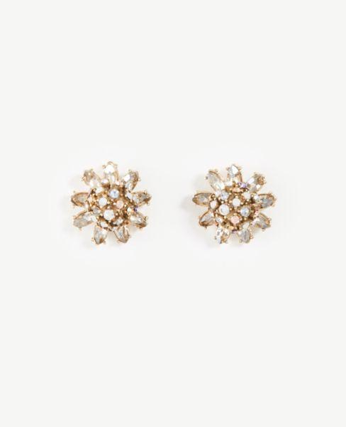 Ann Taylor Floral Stud Earrings
