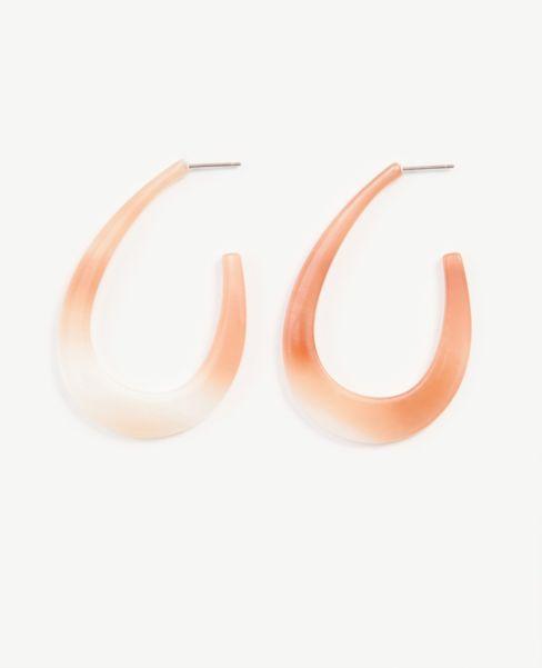 Ann Taylor Acetate Hoop Earrings